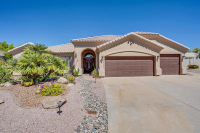 Mesa Single Family Home For Sale: 5345 E McLellan Road #112