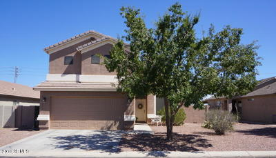 Florence Single Family Home For Sale: 24631 N Lost Dutchman Way