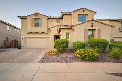 Surprise Single Family Home For Sale: 15584 W Sierra Street
