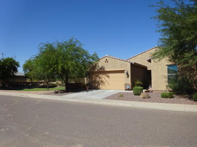 Tolleson Single Family Home For Sale: 10610 W Raymond Street