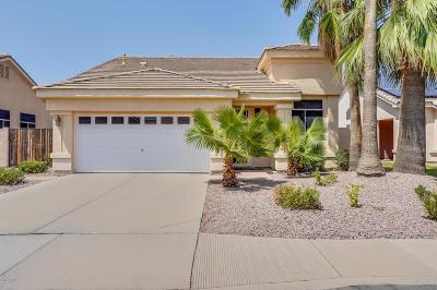 Chandler Single Family Home For Sale: 1466 E Megan Street
