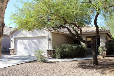 Goodyear Single Family Home For Sale: 17248 W Papago Street