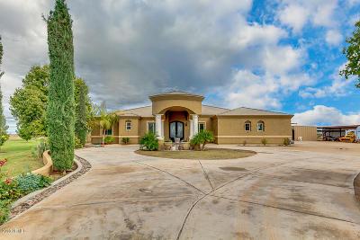 Casa Grande Single Family Home For Sale: 4757 N Signal Peak Road