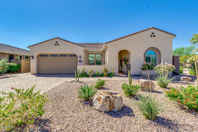 Queen Creek Single Family Home For Sale: 21796 S 220th Place