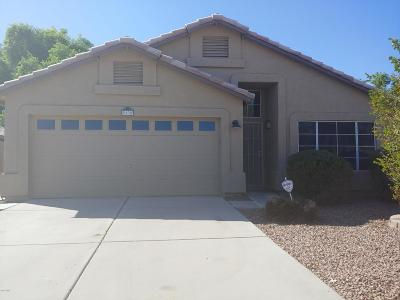 Gilbert Single Family Home For Sale: 63 W Gail Drive