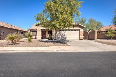 Buckeye Single Family Home For Sale: 25576 W Crown King Road