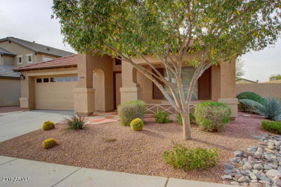Surprise Single Family Home For Sale: 14796 N 136th Lane