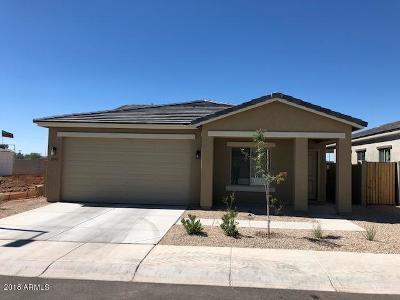 Apache Junction Single Family Home For Sale: 1662 E 16th Avenue