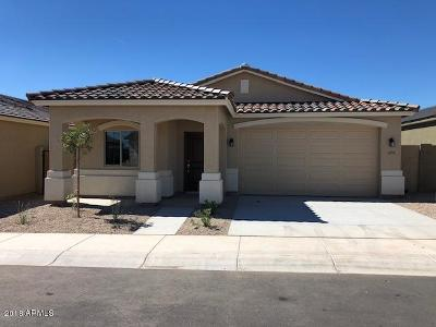 Apache Junction Single Family Home For Sale: 1680 E 16th Avenue
