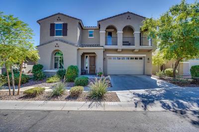 Gilbert Single Family Home For Sale: 3449 E Harrison Street