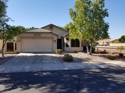 Avondale Single Family Home For Sale: 10817 W Windsor Avenue