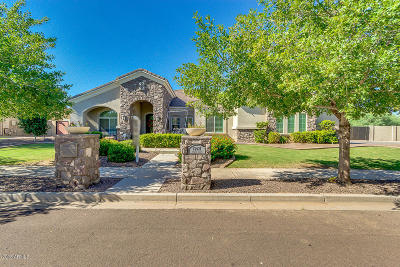 Queen Creek Single Family Home For Sale: 19691 E Julius Road