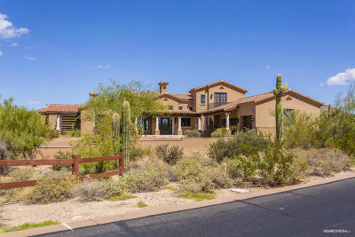 Scottsdale Single Family Home For Sale: 9290 E Thompson Peak Parkway #459