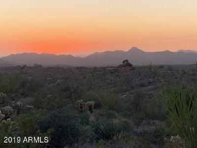 Scottsdale Residential Lots & Land For Sale: 8848 E Larry Hughes Drive