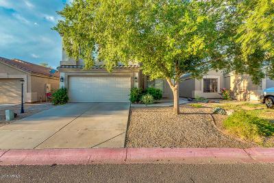 Mesa Single Family Home For Sale: 9706 E Butte Street