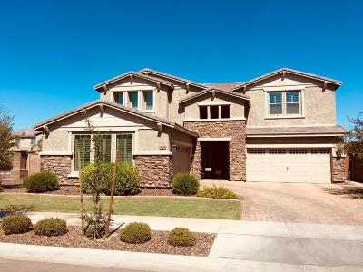 Queen Creek Single Family Home For Sale: 20198 E Rosa Road