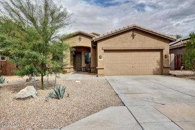 Goodyear Single Family Home For Sale: 17592 W Desert View Lane
