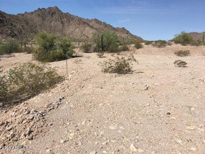 Arlington Residential Lots & Land For Sale: 37xxx S 303rd Ave Street