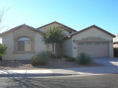 Avondale Single Family Home For Sale: 11933 W Tonto Street