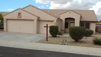 Goodyear Single Family Home For Sale: 15856 W Tohono Drive