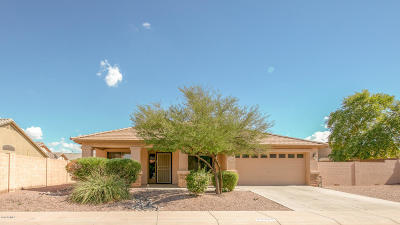 Maricopa Single Family Home For Sale: 22335 N Vargas Drive