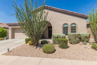 Gilbert Single Family Home For Sale: 4218 E Sourwood Drive
