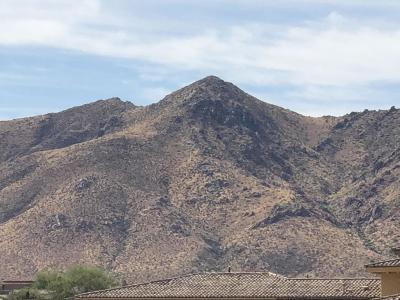 Scottsdale Residential Lots & Land For Sale: 11913 E Hackamore Drive