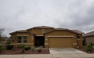 Maricopa Single Family Home For Sale: 42055 W Solitare Drive