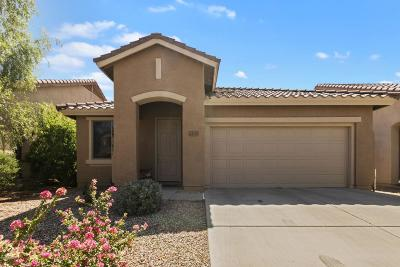 Anthem Single Family Home For Sale: 43319 N Heavenly Way