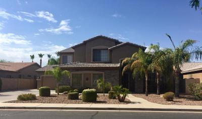 Chandler Single Family Home For Sale: 2103 W Enfield Way
