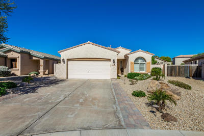 Goodyear Single Family Home For Sale: 14270 W Avalon Drive