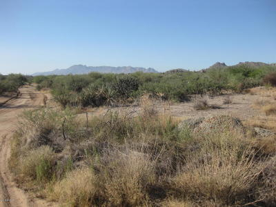 Residential Lots & Land For Sale: 136xx E Westland