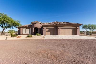 Wittmann Single Family Home For Sale: 25234 W Blue Sky Drive