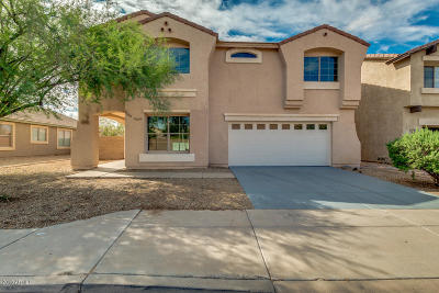 Phoenix Single Family Home For Sale: 7312 S 29th Lane