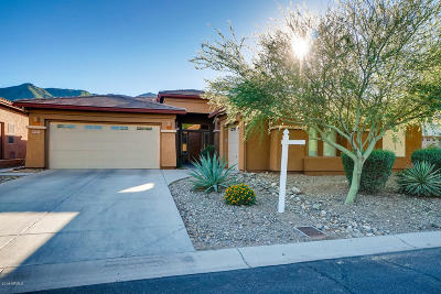 Phoenix Single Family Home For Sale: 1611 W Lodge Drive