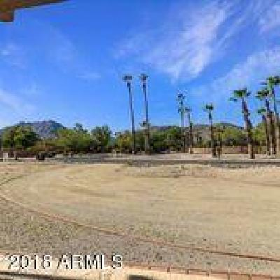 Paradise Valley Single Family Home For Sale: 5002 E Berneil Drive