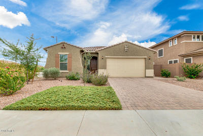 Chandler Single Family Home For Sale: 3091 E Beechnut Place