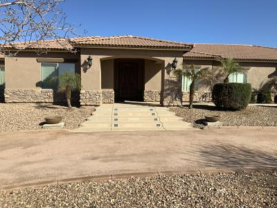 San Tan Valley Single Family Home For Sale: 1704 E Loveland Lane