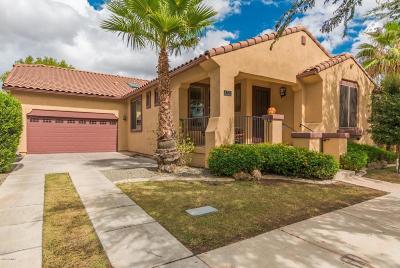 Gilbert Single Family Home For Sale: 2776 E Virginia Street