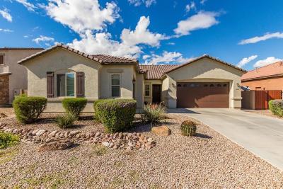 Queen Creek Single Family Home For Sale: 22280 E Desert Hills Court