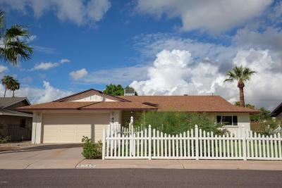 Tempe Single Family Home For Sale: 4518 S Willow Drive