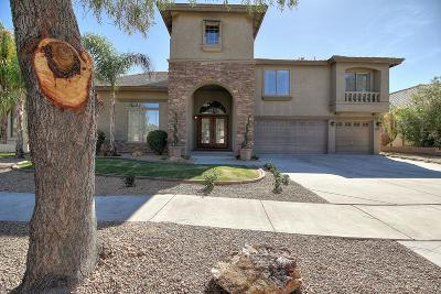 Phoenix Single Family Home For Sale: 33817 N 23rd Drive