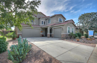 Maricopa Single Family Home For Sale: 42523 W Avella Drive