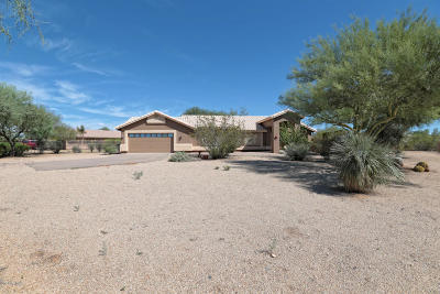 Phoenix Single Family Home For Sale: 38029 N Central Avenue