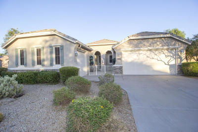 Anthem Single Family Home For Sale: 40337 N Exploration Trail