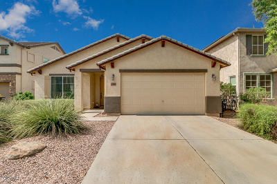 Florence Single Family Home For Sale: 30284 N Cholla Drive