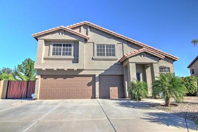 San Tan Valley Single Family Home For Sale: 31703 N Red Rock Trail