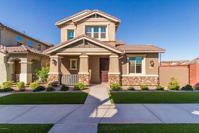 Gilbert Single Family Home For Sale: 3661 E Perkinsville Street