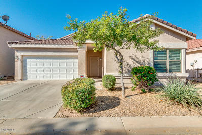 Chandler Single Family Home For Sale: 1030 S Firehole Drive