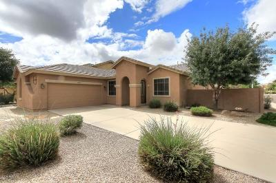 Chandler Single Family Home For Sale: 2850 S Nebraska Street